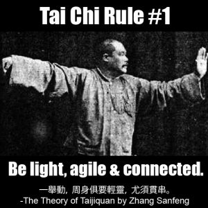 Tai Chi Rule 1 - Be light agile and connected
