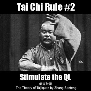 Tai Chi Rule 2 - Stimulate the Qi